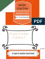 WEB DE REVISÃO SAÚDE COLETIVA
