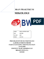 LAPORAN PRAKTIKUM d4 mikologi - new.docx