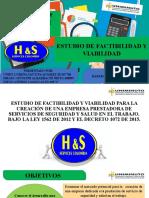 FORMULACION Y EVALUACION DE PROYECTOS  H&S