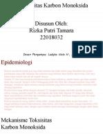 Toksisitas Karbon Monoksida-TLM B-Rizka Putr.pptx