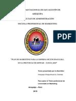 Análisis de una empresa peruana