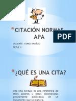 CITACION APA.pptx