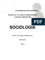 ENSAYO SOCIO 2.docx