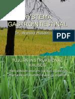 330144_SYSTEMA GASTROINTESTINAL.ppt