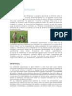 CONTABILIDAD_AGROPECUARI1.docx