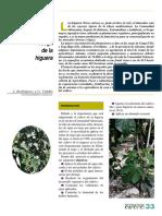 Necesidades de riego en el cultivo de la higuera.pdf