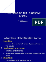 17 Functions of the digestive system