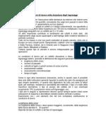 Condizioni di lavoro nella stozzatura degli ingranaggi.pdf