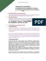 TÉRMINOS DE REFERENCIA AUTOMATIZACION