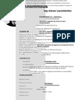 Curriculum Vitae Grupal