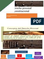Derecho procesal constirucional