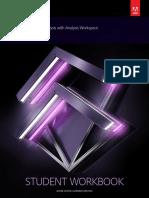 Secured_SG_Data+Analysis+with+Analysis+Workspace.pdf