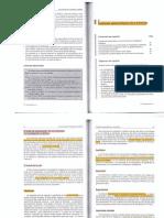 Kvale Steiner Cap 2.pdf