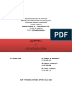 HERIDAS Y CICATRIZACION GRUPO 1.pdf