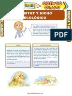 Hábitat-y-Nicho-Ecológico-para-Quinto-Grado-de-Primaria