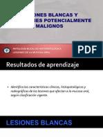 10) DPM