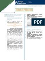 1° Reino Plantae Caracteristicas y clasificación FT.pdf