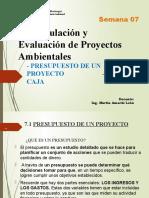 07.Formulacion y Eval de Proyectos