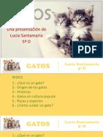 presentacingatos-140423171340-phpapp02