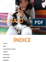 presentacionelgato2003-131212023149-phpapp02