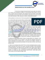 1. PRINCIPIOS BASICOS DEL TIRO CON ARMA DE FUEGO