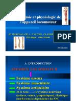 ifsi_anatomie_physiologie_appareil_locomoteur