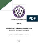 VIGNOLA, ROCIO BELEN.pdf
