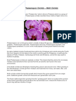 Care of Phalaenopsis Orchids - Moth Orchids