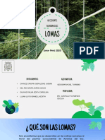 Lomas- (Chavez, Del Rio, Guayas, Lujan)..pdf