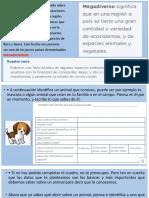 ANIMALES ACUÁTICOS DEL PERÚ.pptx