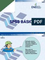spssbasico_introduccion.pdf