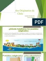 Los Pueblos Originarios de Chile.pptx