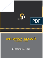 Anatomia y Fisiologia.ppt