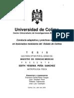 Lesionados medulares.pdf