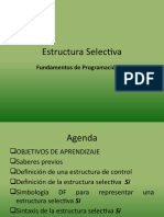 3. Estructura_Selectiva Nuevo