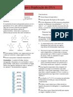 DNA e Replicação do DNA