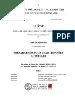 2015TOU33079.pdf