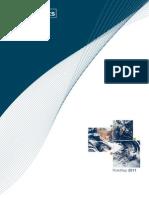 Riskmap Report 2011