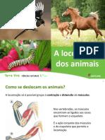 Unidade 7 A locomoção dos animais.pptx