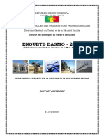 DASMO 2008 raport final.pdf