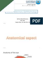 vet ophthalmology-170226015955