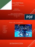 Presentación BELL NESUX (1).pptx