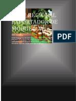 20170327 - PLAN REGIONAL EXPORTADOR DE MOQUEGUA