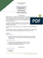 Informe N°2 Limites de consistencia_Final
