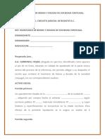 INVENTARIO-DE-BIENES-Y-DEUDAS-DE-SOCIEDAD-CONYUGAL