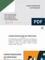 Caracterizacion de procesos 331