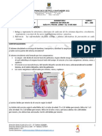 GUIAS°4  DE CIENCIA, RELIGIÓN Y TECNOLOGIA DE CUARTO (1).pdf