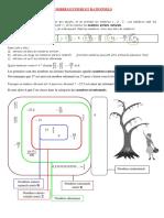 Les_nombres_entiers_et_rationnels_cours_
