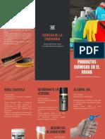 triptico 1.pdf