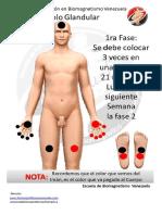 biomagnetismo PUNTOS EN TRES ETAPAS PARA BAJAR DE PESO CON BIOMAGNETISMO